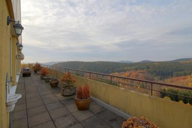 Penthouse im Harz!